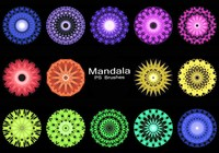 20 Mandala PS Pinceles abr. Vol.5