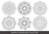 Colección de cepillo de flores Mandala