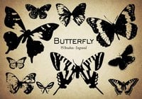 20 Butterfly PS Brushes abr.Vol.9