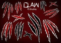 20 Claw Scratch PS Pinceles abr. Vol.8