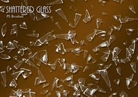 20 Shattered Glass PS Borstels abr.vol.8