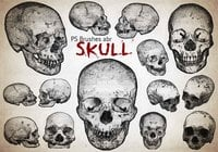 20 Engraved Skull PS Brushes abr  vol.7