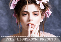 Free Lightroom Presets Collection von BeArt-Presets