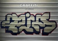 20 Graffiti PS Bürsten abr. Vol. 12