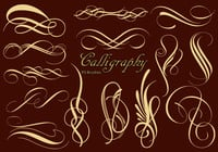 20_calligraphy_brushes_vol.1_preview