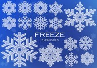 20 Snowflake PS Brushes