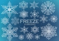20 Freeze Snowflakes PS Brushes abr. Vol.4