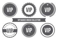 Colección de cepillo de insignia VIP