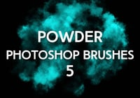 Powder Brushes 5