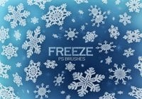 20 Freeze Snowflakes PS Brushes abr. Vol.5