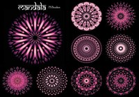20 Mandala PS Brushes abr. Vol.11
