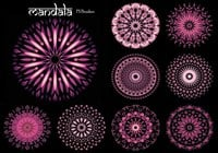 20 Mandala PS Pinceles abr. Vol.11
