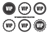 Vip retro badge borste samling
