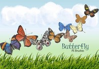 20 Butterfly PS Brushes abr.Vol.10