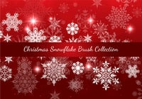 Christmas Snowflake Brush Collection