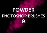 Powder Brushes 9