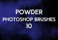 Powder Brushes 10