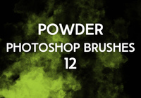 Powder Brushes 12