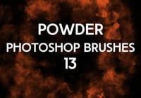 Powder Brushes 13