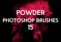 Powder Brushes 15