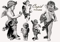 20 brosses PS cupidionales abr. Vol.4