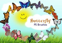 20 Butterfly PS Pinceles abr.Vol.11