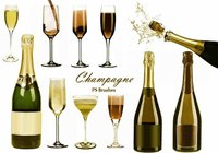 20 Champagne PS Brushes abr.vol.7