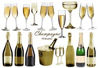 20 Champagne PS Brushes abr.vol.6