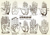 20 Hand Palmistry PS Borstels abr.Vol.11