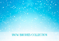 Snow Brushes Collection