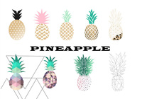 Tropical Pineapple Brush Set