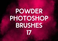 Powder Photoshop Brushes 17
