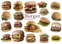 20 Burger PS Borstels ca. vol.8