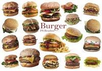 20 Burger PS escova abr. Vol.8