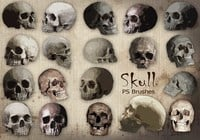 20 Skull PS Brushes abr  vol.9