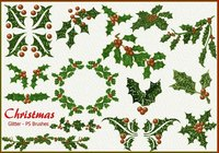 20 Glitter Christmas PS Brushes abr. Vol.9
