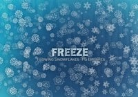 20 Freeze Snowflakes PS Pinceles abr. Vol10