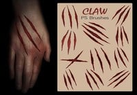 20 Claw Scratch PS Bürsten abr. vol.12