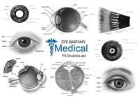 20 Medicinska - Eye PS Brushes abr. Vol.20