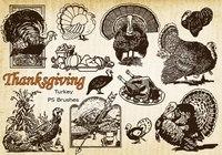 20 Thanksgiving Vintage Turkey PS Brushes abr. Vol.10