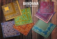 20 Bandana PS Bürsten.abr Vol.12