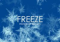 Free Freeze Photoshop Brushes