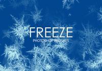 Free Freeze Photoshop Brushes