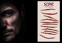 20 Scar PS Brushes abr.Vol.11