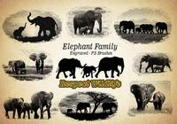 20 Elephant Family PS Brushes abr. Vol.4