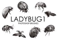 escovas photoshop Ladybug 1