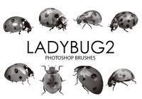 escovas photoshop Ladybug 2