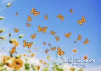20 Dispersion Butterfly PS Brushes abr. Vol.14