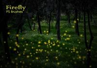 20 Firefly PS Brushes abr vol.9