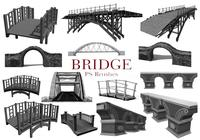 20 Bridge PS-borstels abr. vol.8